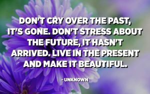 Quote: Don't cry over the past, it's gone. Don't stress about the future, it hasn't arrived. Live in the present and make it beautiful. Author unknown.
